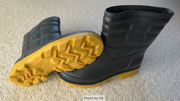 GOCO boots